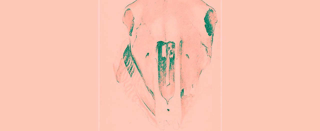 Retrato de una mujer que puso el corazón en la herradura y se incendió